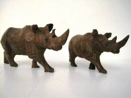 Ironwood Rhino from Zimbabwe